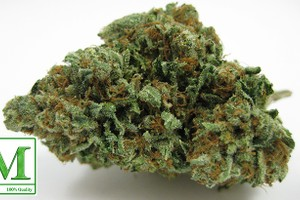 Jet Fuel Marijuana Strain product image