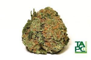 Kilimanjaro Marijuana Strain product image