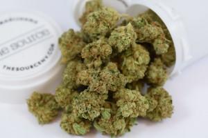 Kong Marijuana Strain product image