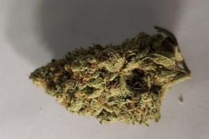 Kosher Jack Marijuana Strain product image