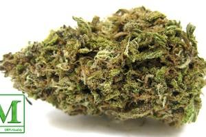 Lavender Marijuana Strain product image
