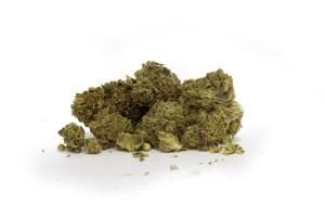 Lemon Tree Marijuana Strain product image