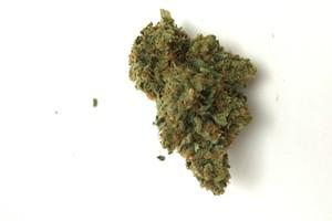 Madman OG Marijuana Strain product image