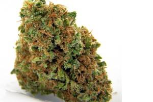 Maui Wowie Marijuana Strain product image