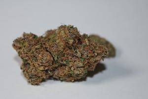 Corleone Kush Marijuana Strain product image