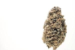 Medicine Man Marijuana Strain product image