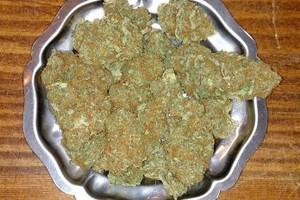 Pennywise Marijuana Strain product image