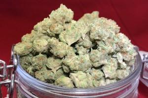 Phantom OG Marijuana Strain product image