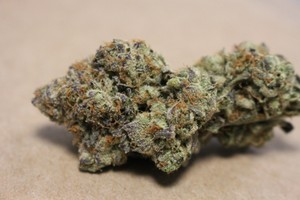 Purple Chemdawg Marijuana Strain product image