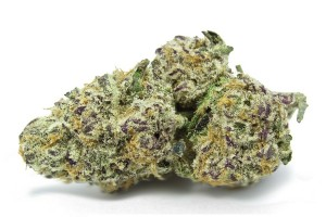Purple Punch Marijuana Strain product image