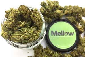 Skywalker OG Marijuana Strain product image