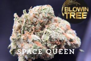 Space Queen Marijuana Strain product image