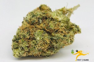 Sunset Sherbet Marijuana Strain product image