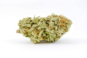 Sweet Cheese Marijuana Strain product image