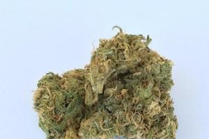 Tangerine Haze Marijuana Strain product image