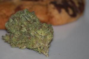 Thin Mint Girl Scout Cookies Marijuana Strain product image