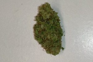 White Widow Marijuana Strain product image