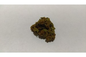 White Fire OG (WiFi OG) Marijuana Strain product image