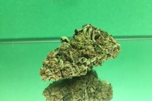 Mendocino Purps Marijuana Strain product image