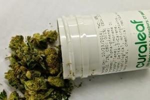 Curaleaf marijuana producer