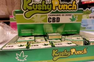 Kushy Punch marijuana producer