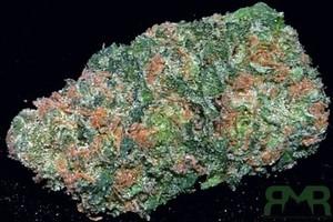 Big Buddha Cheese Marijuana Strain featured image