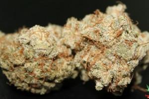 Cherry Kush Marijuana Strain featured image