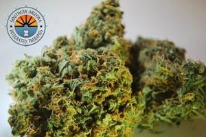 Super Lemon Haze Marijuana Strain featured image