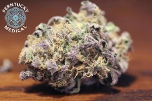 Thin Mint Girl Scout Cookies Marijuana Strain featured image