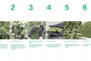 Curaleaf Marijuana
