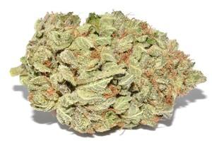 Afghan Purple Kush Marijuana Strain image
