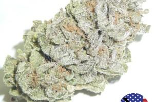 Afgooey Marijuana Strain image