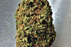 Apple Jack Marijuana Strain image
