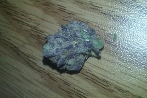 Berry 1 Marijuana Strain image