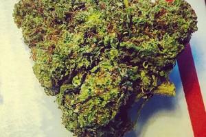 Blissful Wizard Marijuana Strain image