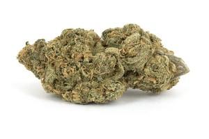 Blue Dynamite Marijuana Strain image