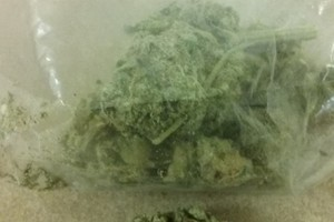 Blueberry Cheesecake Marijuana Strain image