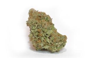 Blueberry Silvertip Marijuana Strain image