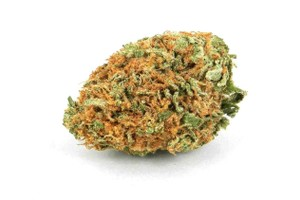 C4 Marijuana Strain image