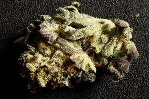 Charlotte's Web Marijuana Strain image