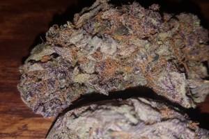 Cheese Quake Marijuana Strain image