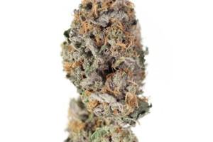 Citrus Farmer Marijuana Strain image