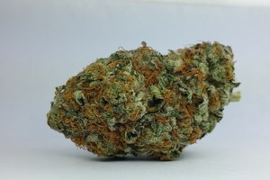 Death Bubba Marijuana Strain image