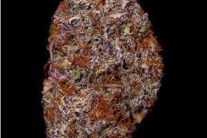 deepwater purps Marijuana Strain image