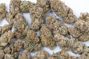 do-si-dos Marijuana Strain image