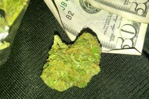 Game Changer Marijuana Strain image