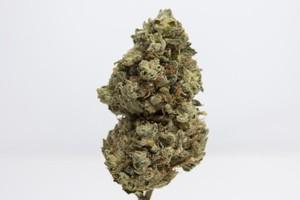 Garlic Cookies Marijuana Strain image