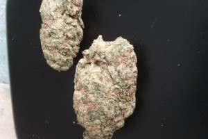 Kosher Kush Marijuana Strain image