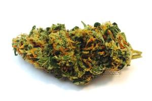 Mango Tango Marijuana Strain image