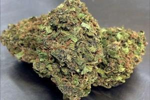 Mendocino Purps Marijuana Strain image